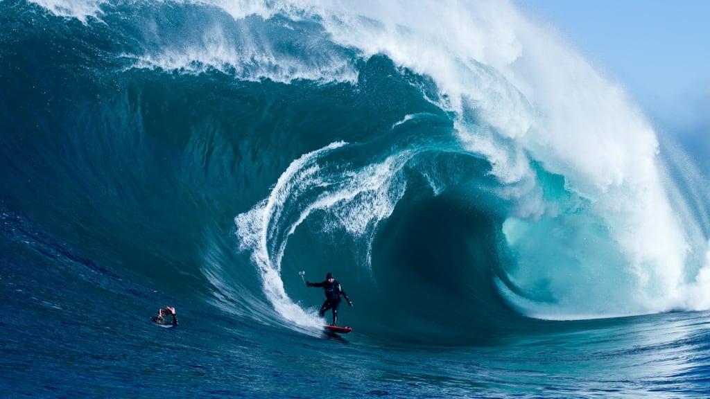 Всемирный день океанов: подборка самых ярких фото - фото №12