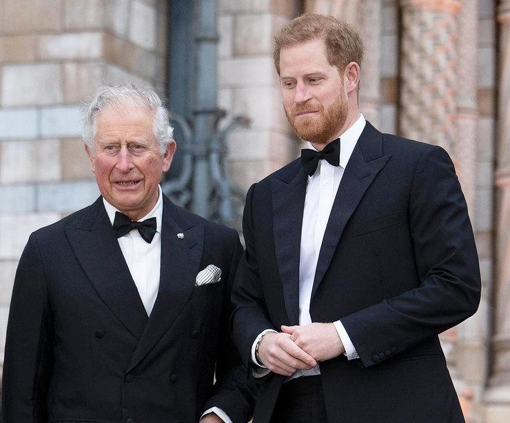 СМИ: принц Чарльз хочет лишить сына принца Гарри и Меган Маркл королевского титула - фото №1